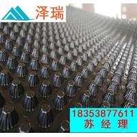 浙江台州车库用塑料凹凸排水板=2公分透水板价格